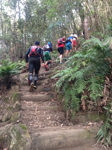 Climbing the Golden Stairs to Narrowneck